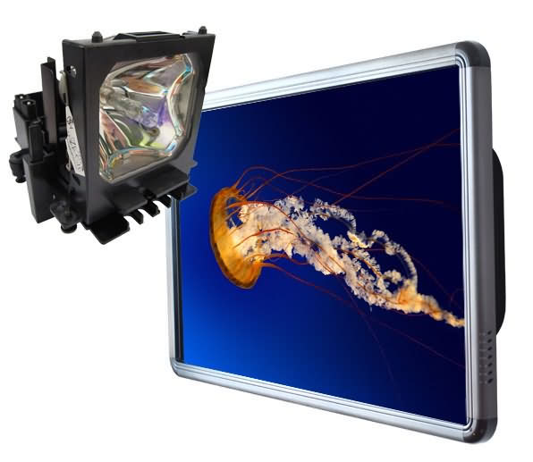 Touch Screen lower cost than Projector Lamp